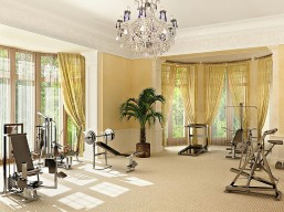 celeb home gym