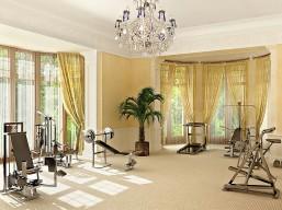 celeb home gym