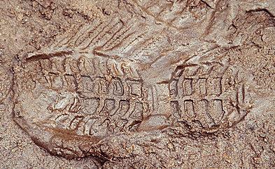 boot print mud