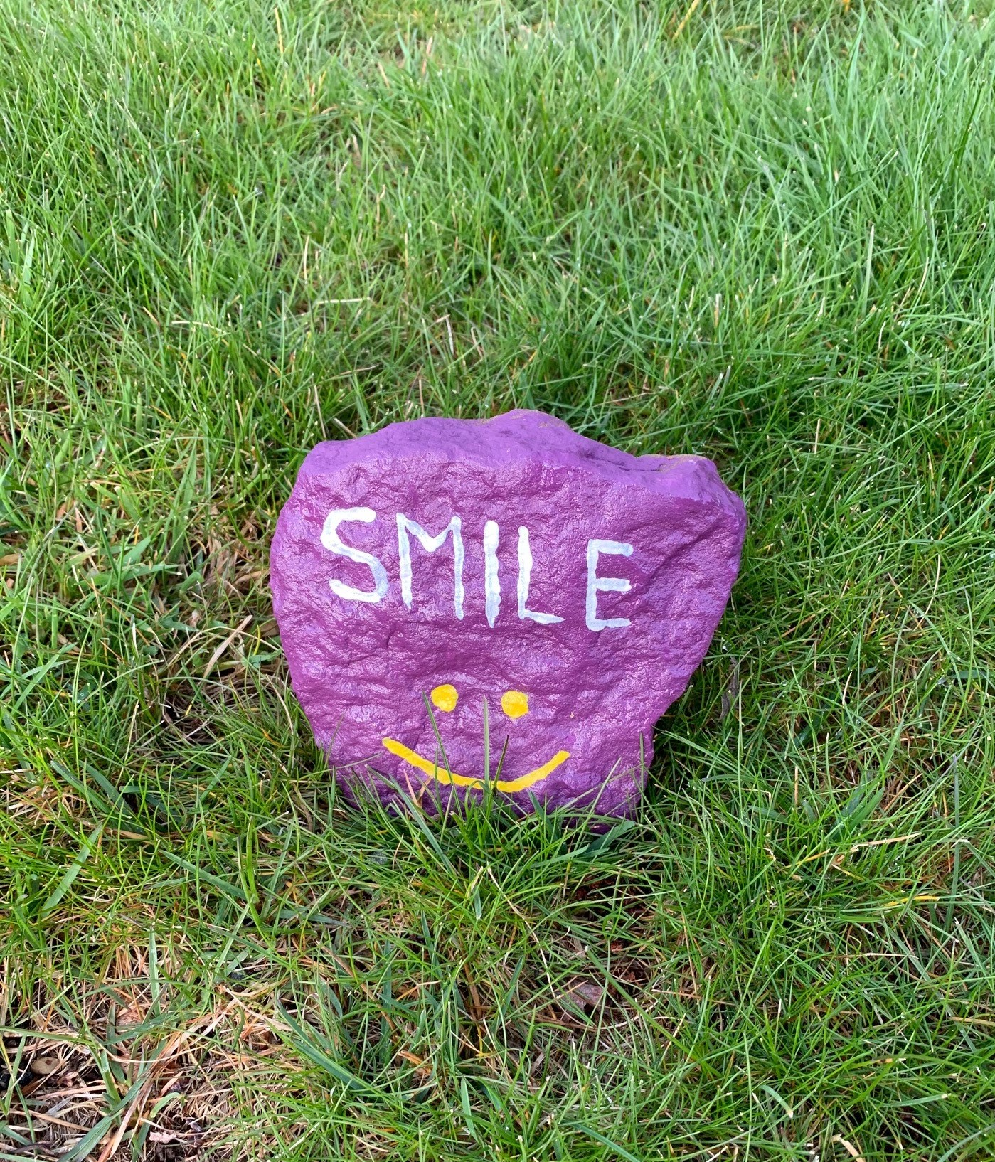 painted rock1